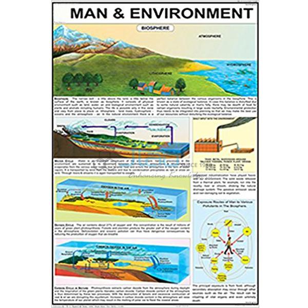 Man and Environment