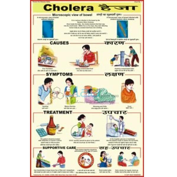 Prevent Diseases