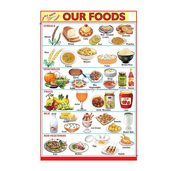 Our Food Chart India Our Food Chart Manufacturer Our Food Chart