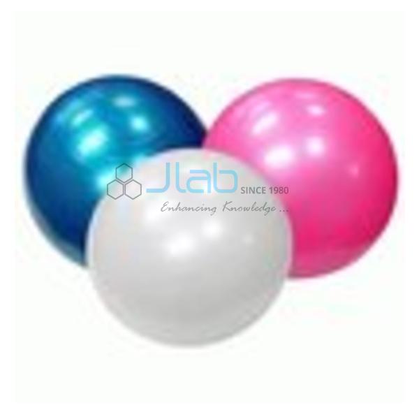Exercise Physio Ball