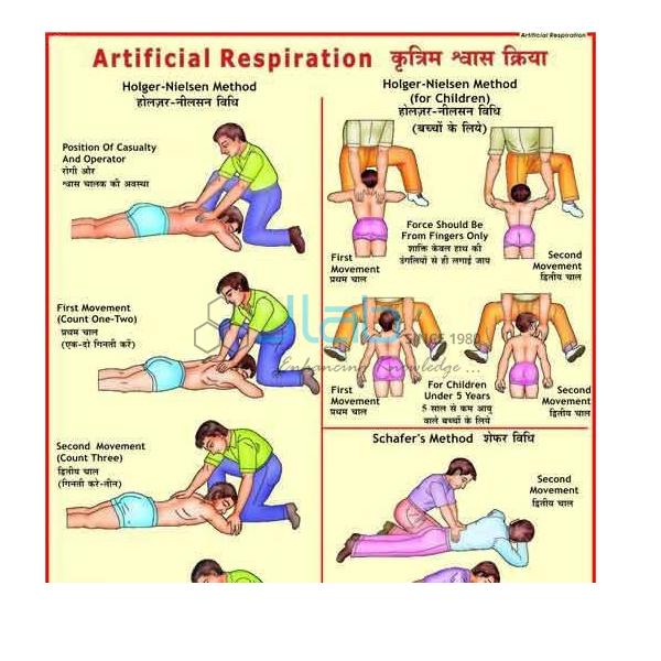 Artificial Respiration Chart