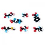7 Amino Acid Collection Molecular Model