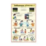 Influenza Chart