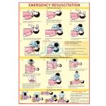 Emergency Resuscitation Chart