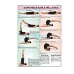 Sarvangasan and Halasan Chart