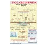 Organization of NCC Chart