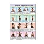 Bandhas and Pranayam Chart