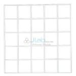 Grid Quadrat 25 Square