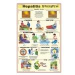 Hepatitis Chart